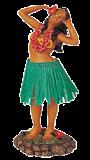 Hawaii Hula Girl hors Paypal