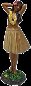Hawaii Hula Girl 5